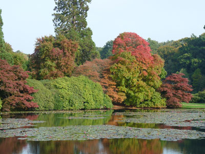 Sheffield Park lake