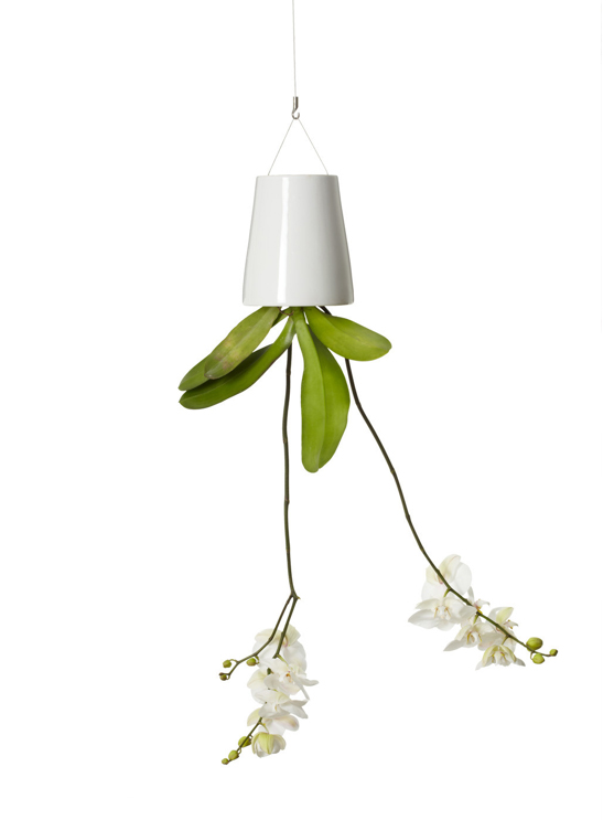if it 39 s hip it 39 s here archives a new perspective on hanging plants introducing boskke sky. Black Bedroom Furniture Sets. Home Design Ideas