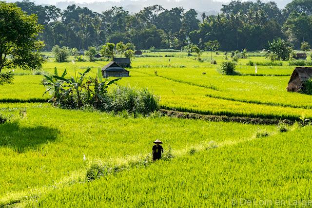 Route de Sidemen à Jimbaran - Bali