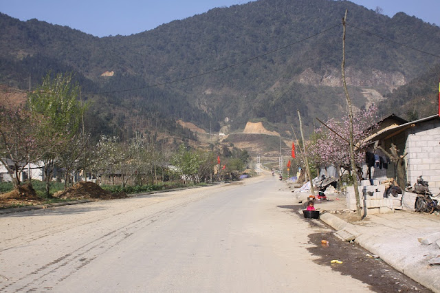 Peach blossom on the journey to discover the Ha Giang Plateau 1