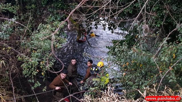 Operativo para rescatar a persona desde el río Rahue