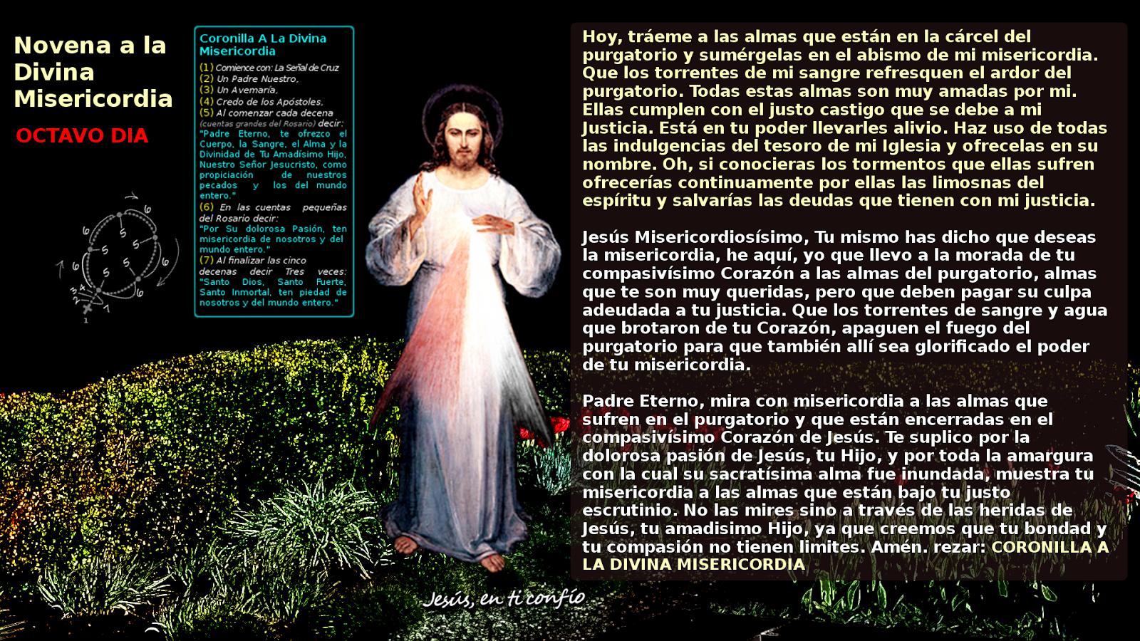 novena divina misericordia  OCTAVO DIA con pedidos de Jesus misericordioso