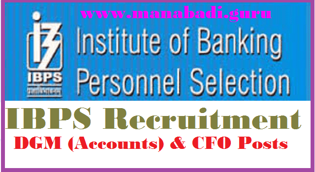 Bank jobs, IBPS jobs, Institute of Banking Personnel Selection, latest jobs, Govt Jobs, DGM (Accounts) and CFO Jobs