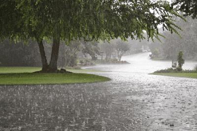 Puisi Tentang Hujan Hujan Teman Aku Oleh Chinta Mutiara