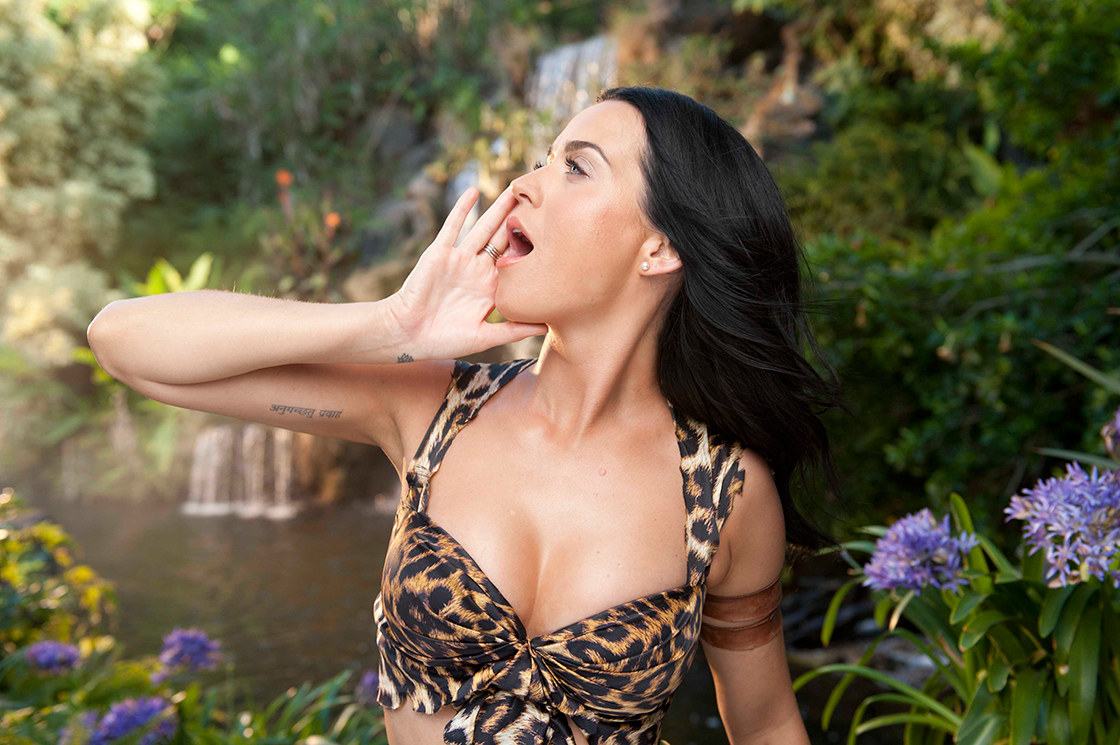 Top Teen Arriest Katy Perry