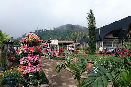 Taman Begonia Lembang-Bandung Jawa Barat