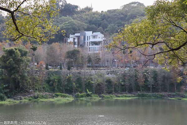 台中新社|松之戀|夢幻湖(雙翠湖)|白色玻璃屋和200棵落羽松依山傍水|新社秘境