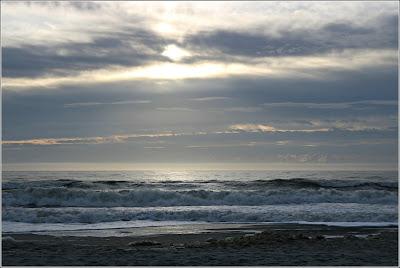 shoreline vista