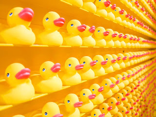 Scalabilité, la capacité à monter en charge sans impact sur l'organisation