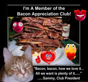 I belong to Angel Sammy's bacon Appreciation Club1