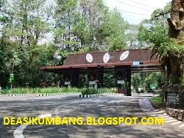 Daftar Lengkap Harga Tiket Taman Safari Bogor Indonesia