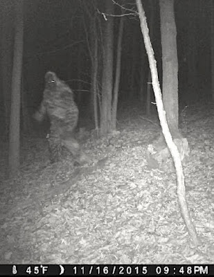 Trail Camera Bigfoot Hoax