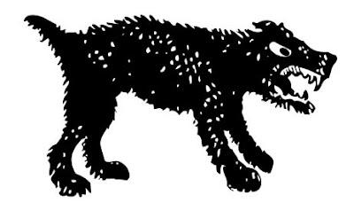 mordedura perro callejero