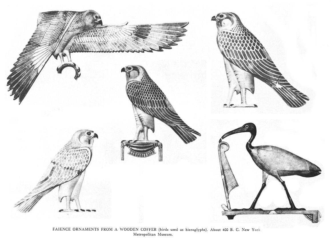 Catching Flies: Bird art from the past