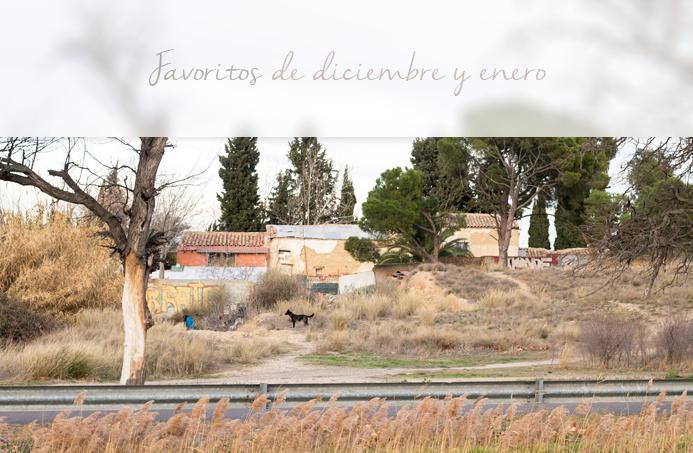 favoritos diciembre enero lista