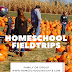 Homeshool Field Trips: Family or Group?