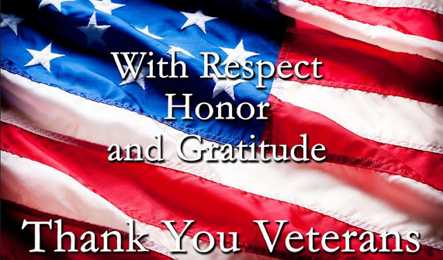 Image result for veterans day 2016 images