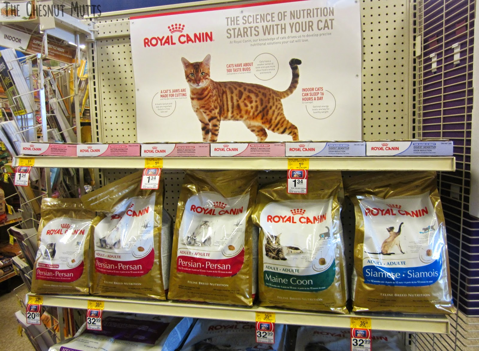 Royal Canin Breed Specific Cat Food