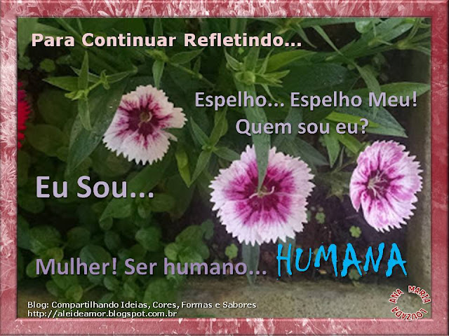 Texto e Foto de Ana Maria Louzada