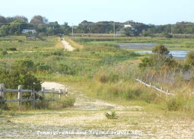 The Nature Conservancy - South Cape May Meadows in New Jersey