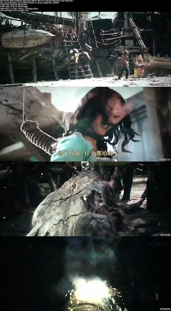 Pirates of the Caribbean Dead Men Tell No Tales 2017 HDCAM 480p Dual Audio Hindi
