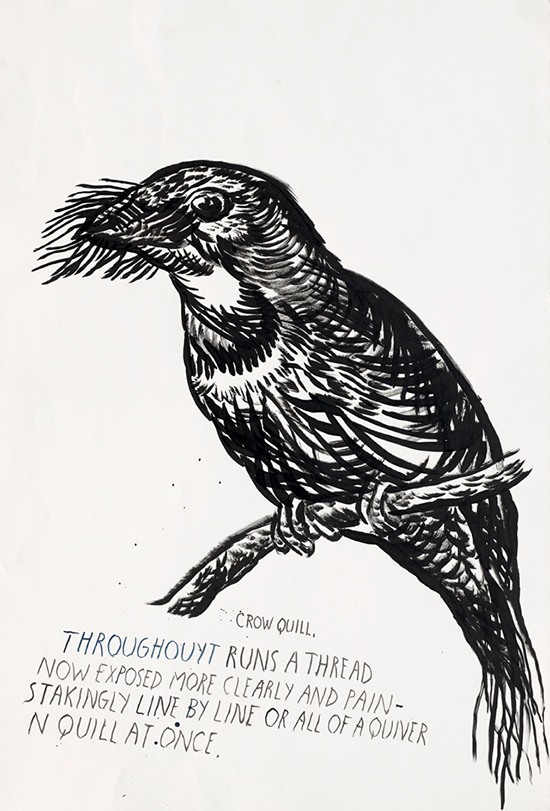 Raymond Pettibon, contemporary drawing