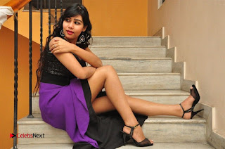 Telugu Actress Rachana Smith Stills at Money is Honey Audio Release  0112.jpg