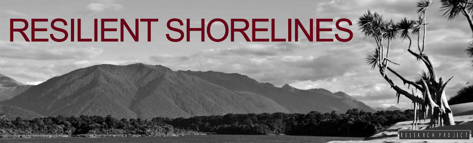 Resilient Shorelines | natural solutions for nature's extremes