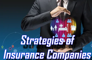 Strategies of Insurance Companies