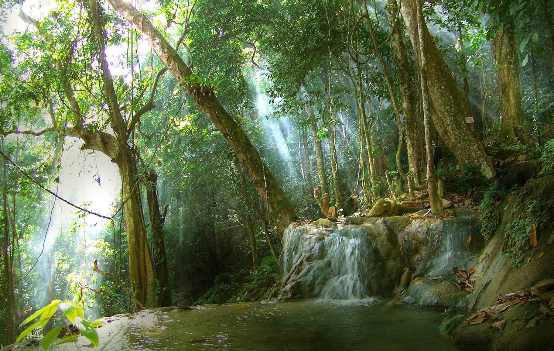 Natural Water From the Mountains Meratus | SENI - BUDAYA INDONESIA