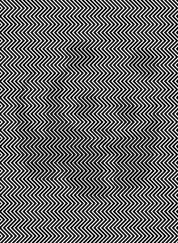 Βλέπετε το ζώο που κρύβεται σε αυτήν τη φωτογραφία; Μόνο 1 στους 100 το βλέπει!