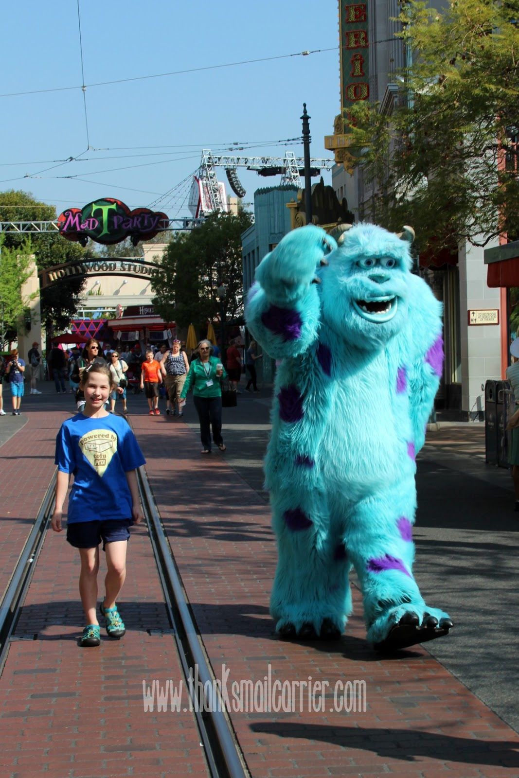 Disneyland Sulley