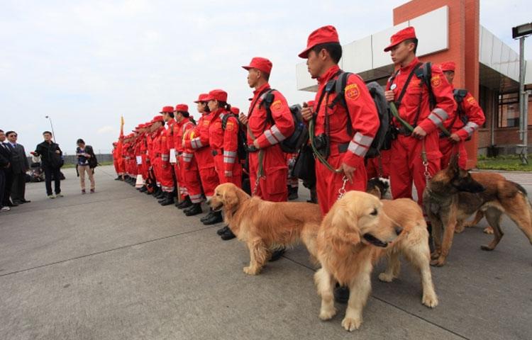perros de busqueda y rescate en argentina