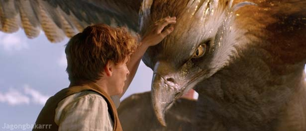 Fantastic Beasts Sinopsis Scene