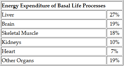 Calculate Basal Metabolic Rate (BMR) online (Harris Benedict Equation)