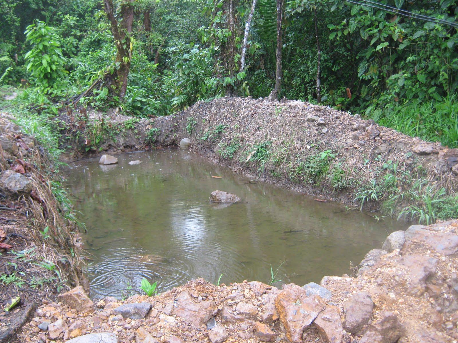 Batall n de apoyo a la misi n baami9 un ejercito muy for Como hacer un criadero de cachamas