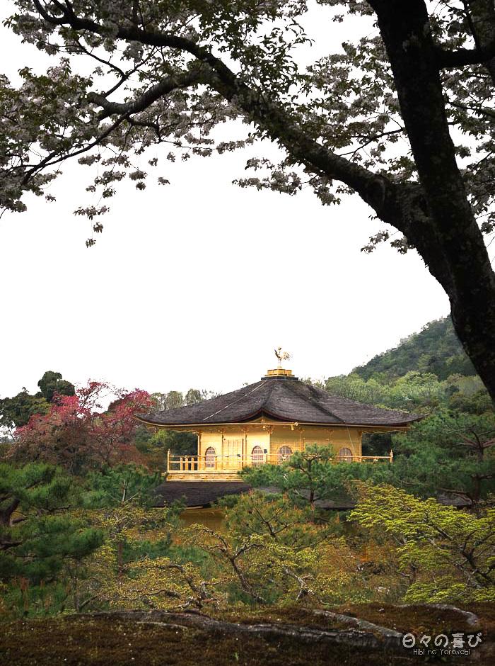 toit du pavillon d'or depuis les hauteurs, Kinkaku-ji, Kyoto
