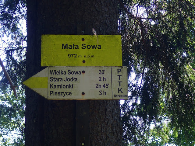 Szczyt mniejszej z Sów, drugiego co do wysokości szczytu pasma
