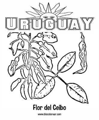 colorear Flor del Ceibo,