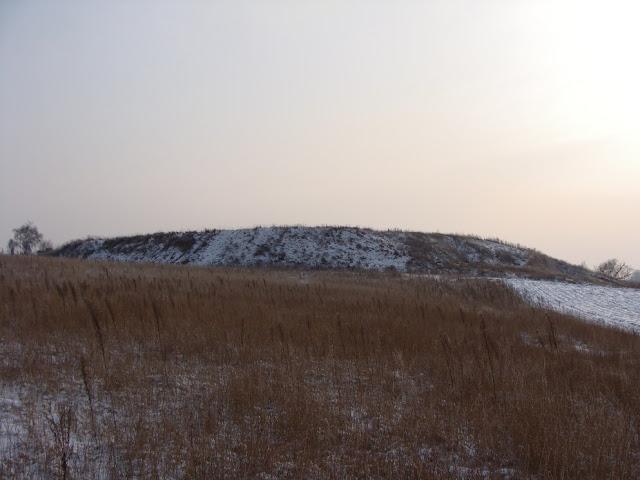 Wczesnośredniowieczne grodzisko pierścieniowate we wsi Brzoza