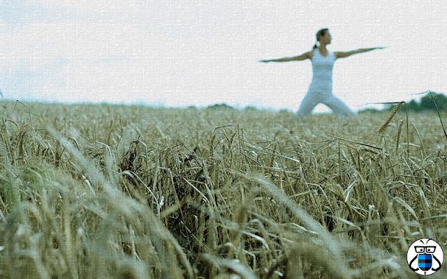 Your Basic Yoga Equipment