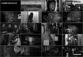 Crepuscule. 2009.