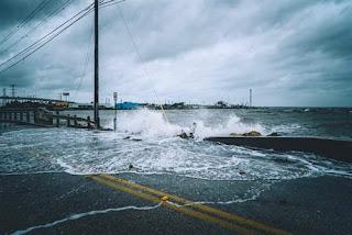 typhons assurance