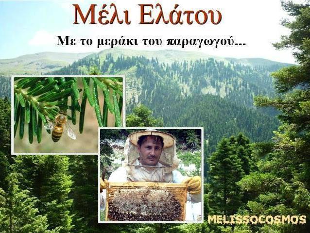 Προσφορά: Έκπτωση στις ετικετες μελιού σε όλους τους αναγνώστες του MELISSOCOSMOU