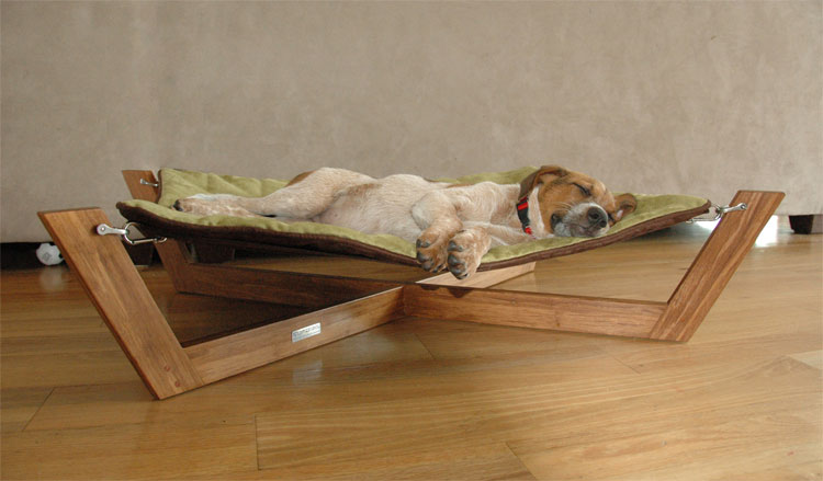 ... designer and founder of Pet Lounge Studios, is an eco-friendly pet bed made with an exotic strand bamboo material, which has the look of a cross between ...