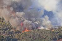 اسرائيل, اسرائيل تحترق, حريق اسرائيل اليوم, اسرائيل اليوم, اسرائيل الان, حريق اسرائيل اليوم, حريق اسرائيل فيديو,