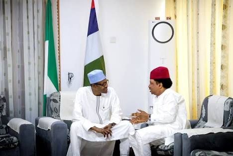 What I Told Buhari In Daura - Senator Shehu Sani