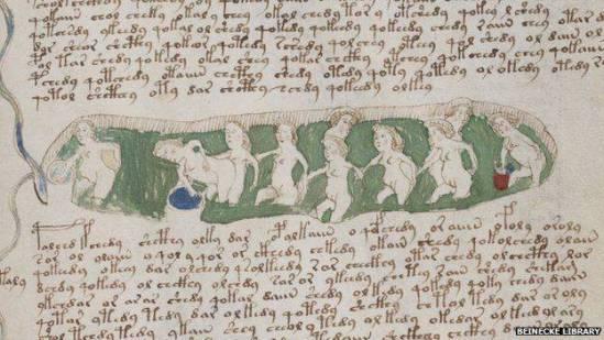 Karakter dan Isi Naskah Manuskrip Voynich