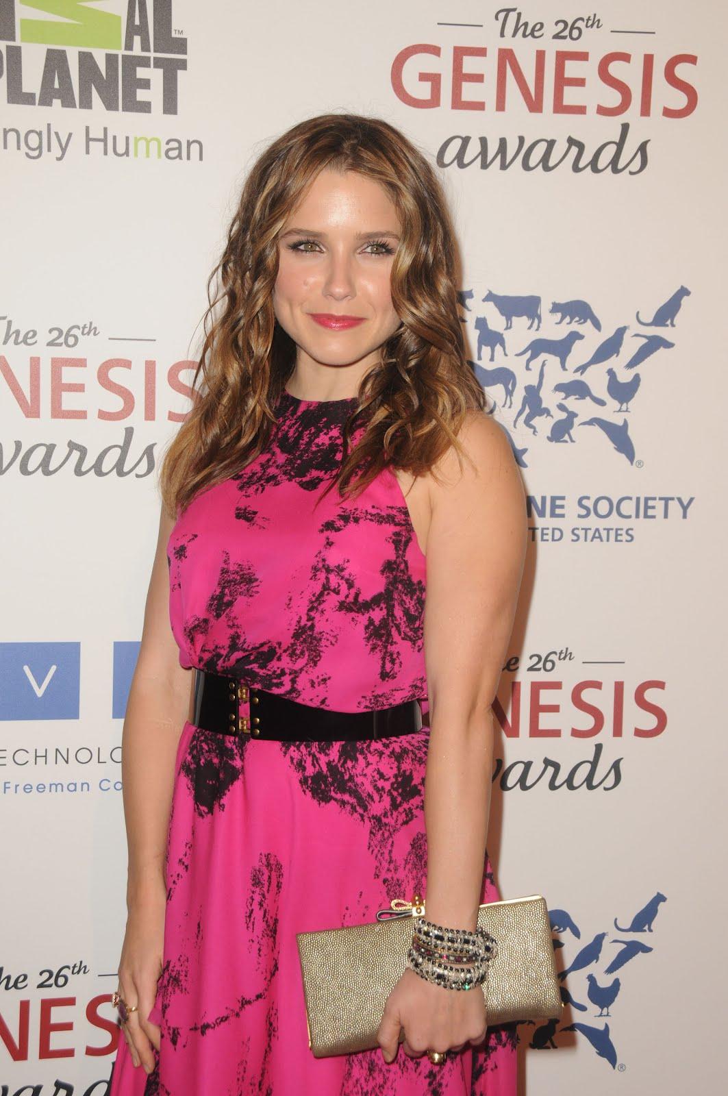 Celebrities Spy Sophia Bush Dazzles In A Hot Pink Dress