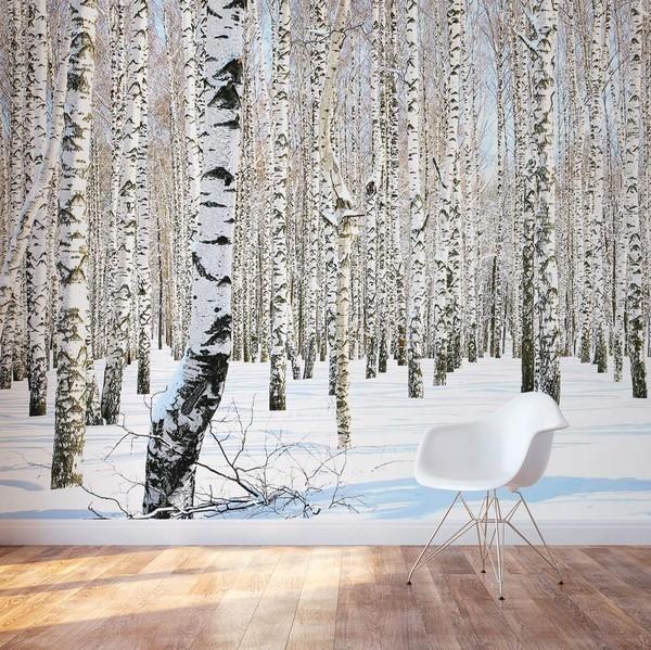 Koivu Tapetti Koivu Taustakuva koivu runkojen koivumetsä taustakuva puunrungot